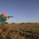 T. Boone Pickens hunts for quail at his Mesa Vista Ranch in the Texas Panhandle. Mandatory credit: Wyman Meinzer .
